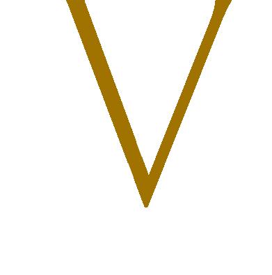 very-vienna-logo-client